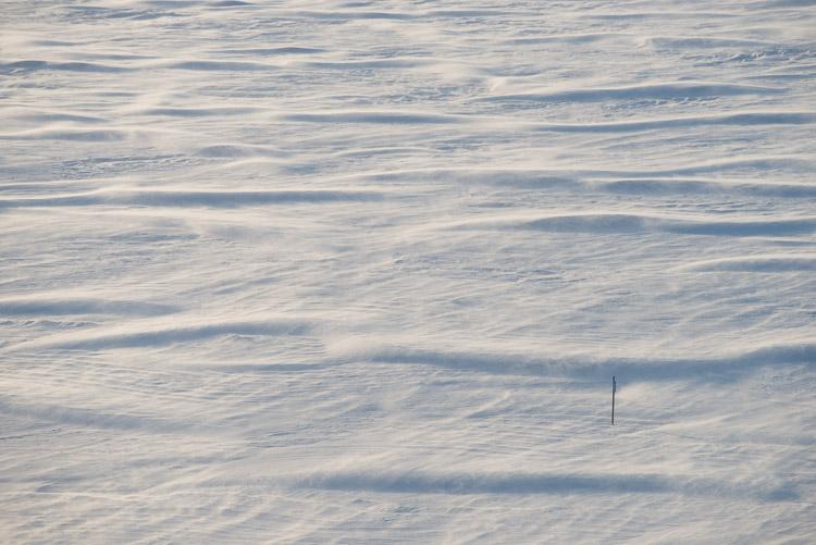 Sun shadows across windswept ice.