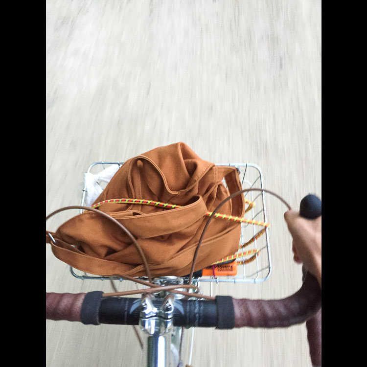 Wald basket cruising