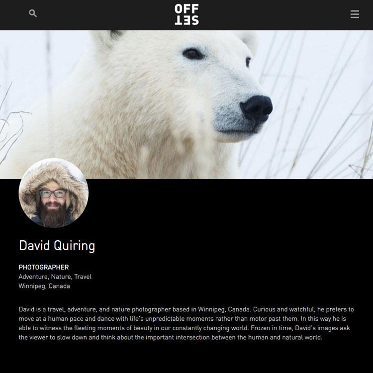 Offset Artist Profile