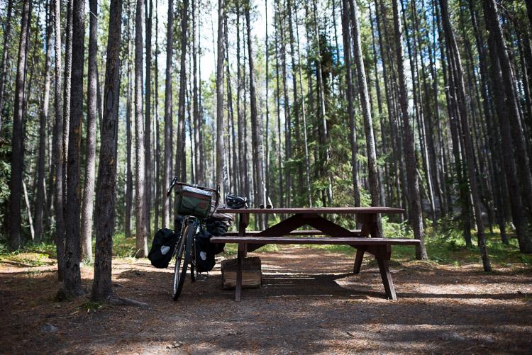 Jonas Creek walk-in campsite