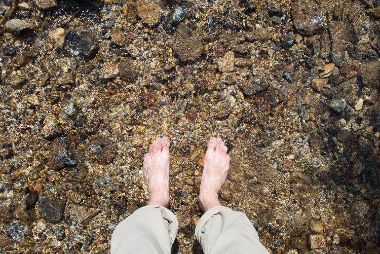 Feet in Rocky Mountain stream