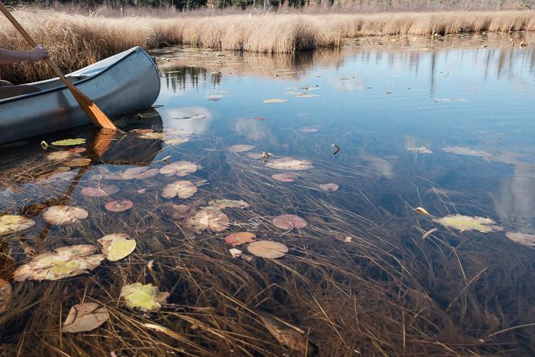 A canoe cuts through autumn reflections.