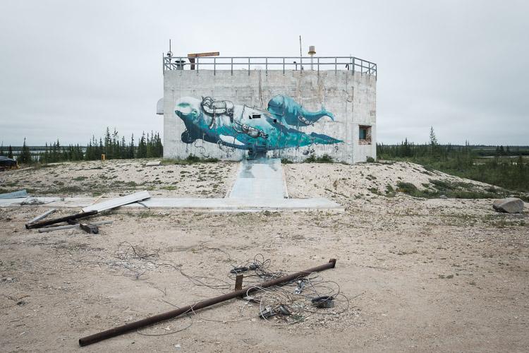 Beluga mural at Churchill rocket range