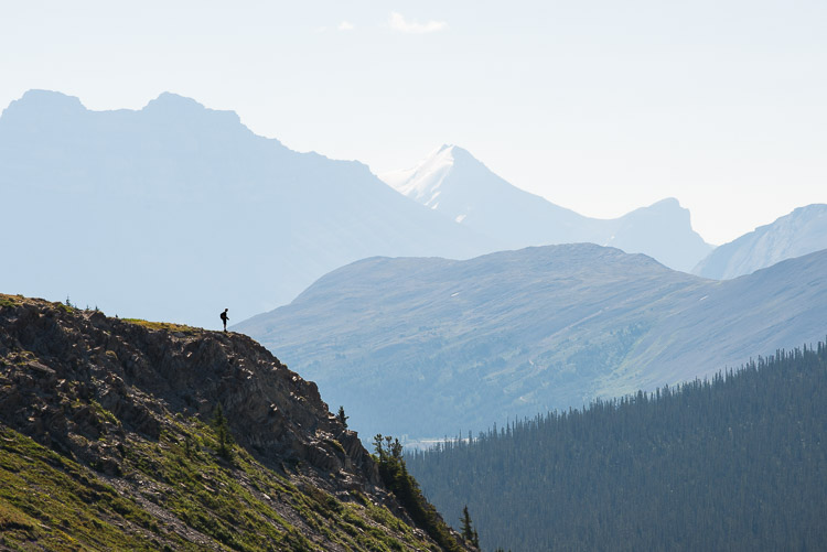 A lone hiker silhouettes the ridge marking the beginning of Wilcox Pass