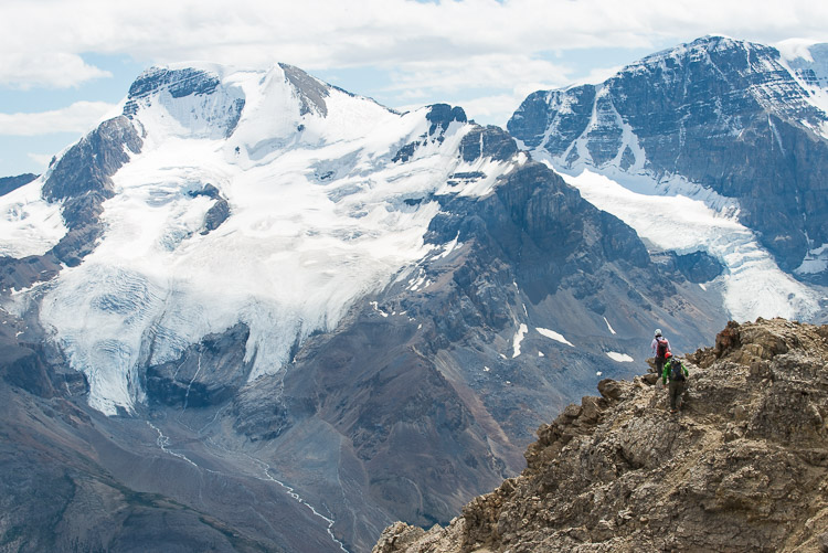 Climbers descending Mount Wilcox against the Athabasca Glacier