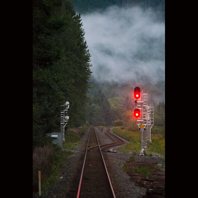 West coast mist over train tracks
