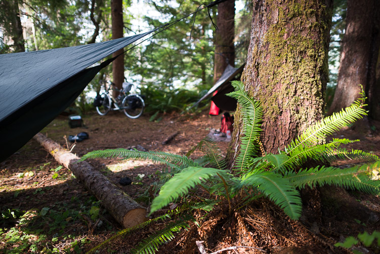 Hammock tent camping on the Haida Gwaii - lush base camp with bicycles