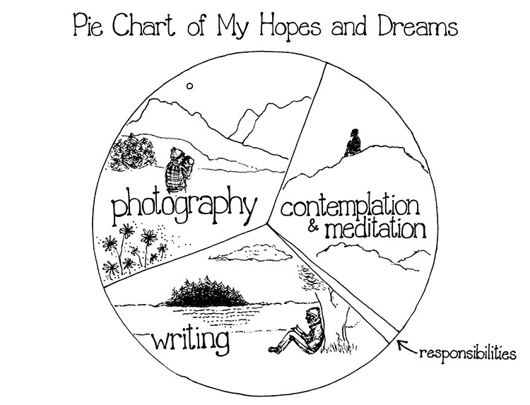 Pie Chart of My Hopes and Dreams