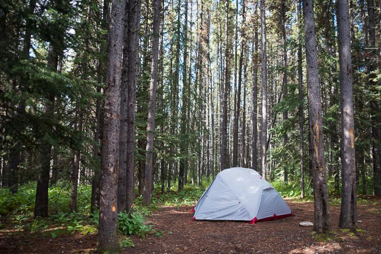Tent camping in Kananaskis