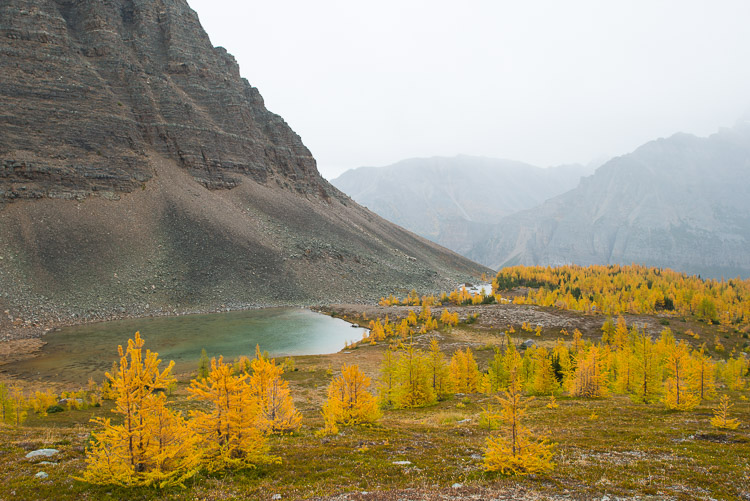 Alpine lakes and yellow larch trees