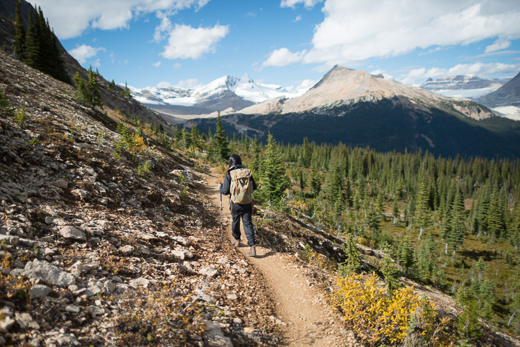 Female hiker in the Canadian Rocky Mountains