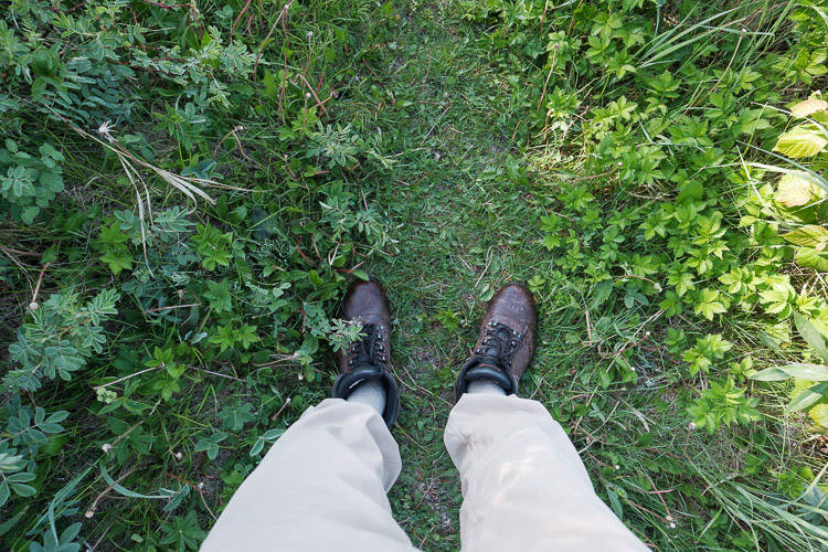 Hiking shoes - point of view