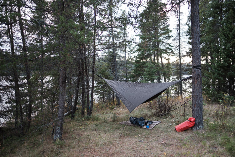 Hammock tent camping in the trees