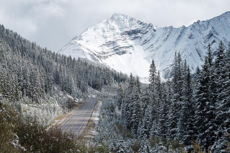 Kananaskis Highway 40 - Winter access to paradise